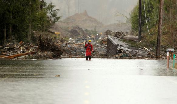 A rescuer stands on the flooded Highway 530 as search work continues in the mud and debris from a massive mudslide that struck Oso, Washington last week. Rescuers are searching for 90 people still missing and are expecting the death toll to climb sharply soon