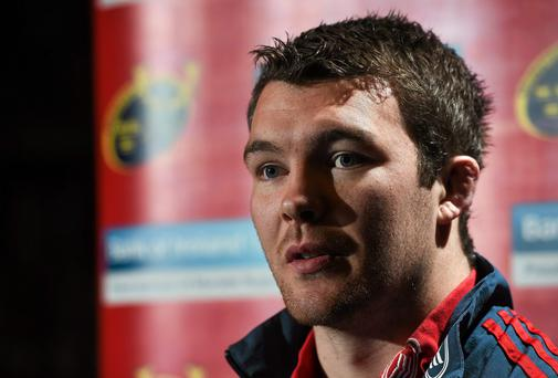 Munster flanker Peter O'Mahony has won his fitness battle ahead of his side's Heineken Cup quarter-final against Toulouse