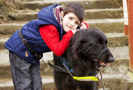 Noah Coughlan with his guide dog Picasso the dog at Boat Strand Cove, Co Waterford. Photo: Karen Dempsey