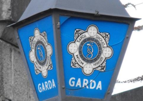 A garda spokesman said the mother informed them she was aware that two friends were calling to see her baby