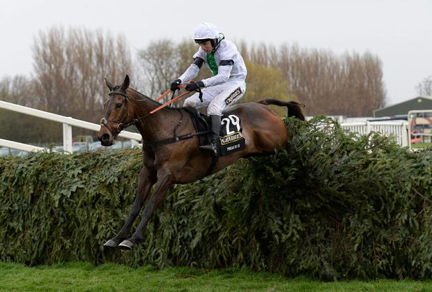 Leighton Aspell rides Pineau De Re to victory in the Grand National at Aintree yesterday afternoon