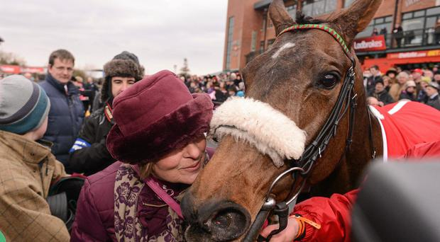 Trainer Dot Love kisses Liberty Counsel after sending it out to win the Ladbrokes Irish Grand National Steeplechase