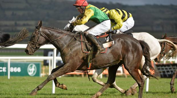 Goonyella, with Jamie Flynn up, in Punchestown, Co Kildare