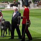 President Higgins presented a new coat to the Irish Guards wolfhound mascot