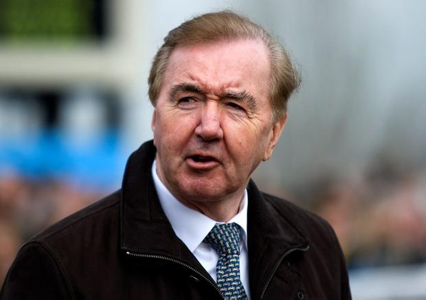 No one has hit the ground running to a greater extent than Dermot Weld