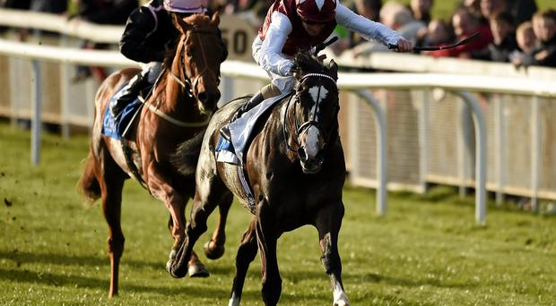 Answered, with Kevin Manning up, race ahead of Onenightidreamed, with Wayne Lordan up, who finished second, on their way to winning The Irish Stallion Farms European Breeders Fund Maiden