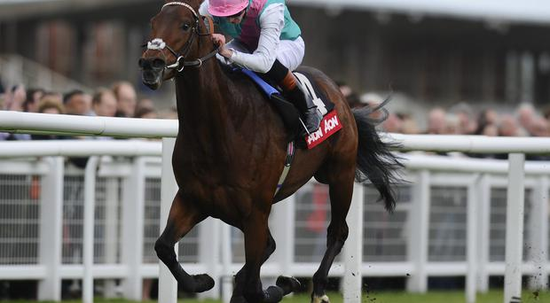 James Doyle riding Kingman win The AON Greenham Stakes at Newbury racecourse