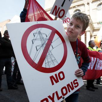6 year old David Leigh from Co.Kildare who took part in the Windfarms,Pylons and Substations protest march to Leinster House. Pic Tom Burke 15/4/14