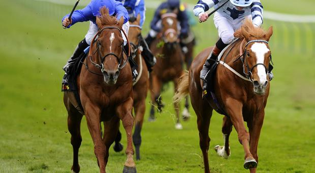 Mickael Barzalona riding Sudden Wonder, left, win the £200,000 Tattersalls Millions Three-Year-Old Trophy at Newmarket yesterday