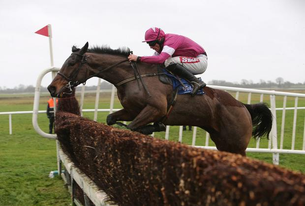 Davy Russell will be hoping to partner Mozoltov to another victory at Fairyhouse tomorrow. Photo: Caroline Norris