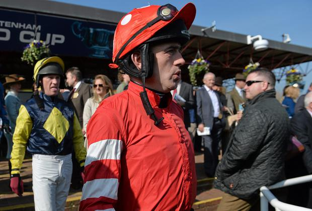 Ruby Walsh walks out ahead for the Triumph Hurdle on March 14 prior to suffering a compound fracture of the humerus at the second hurdle. He is set to return at Punchestown in two weeks' time. Photo: Ramsey Cardy / SPORTSFILE