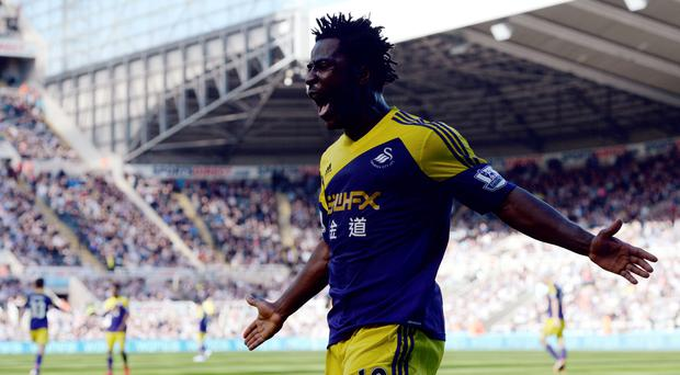 Swansea City's Wilfried Bony celebrates after scoring a goal against Newcastle United