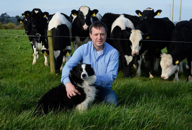 RESEARCH: John O'Flaherty from Kilflynn in Co Kerry is currently researching and writing a PhD examining the history of veterinary practice in Ireland and the corresponding decline of traditional animal medicine practitioners such as cow-doctors and charmers. Photo: Dominick Walsh.