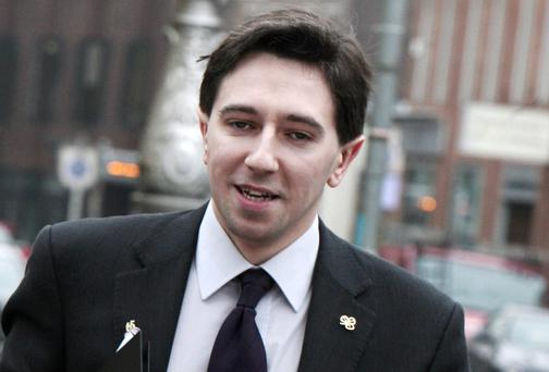 Simon Harris: candidate. Photo: Tom Burke