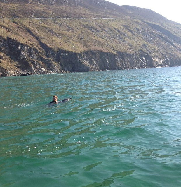 Colin Honeyman swimming with the dolphin out to sea.