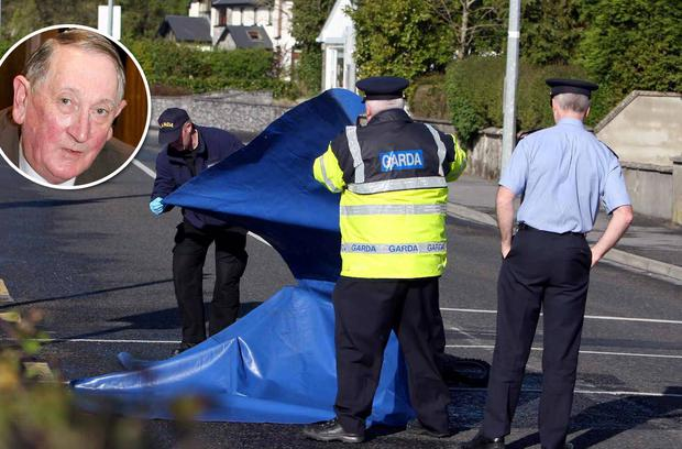Gardai at the scene of the hit-and-run in Loughrea, Galway, where cyclist John White (inset) later died from his injuries.