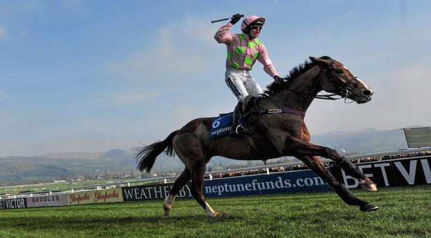 Jockey Ruby Walsh celebrates victory on Faugheen