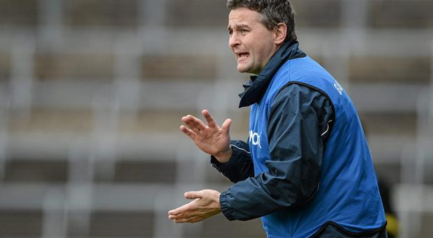 Limerick hurling manager TJ Ryan