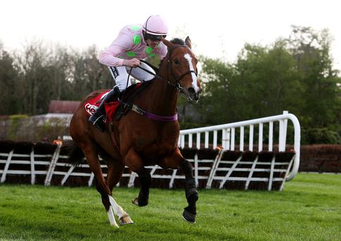 Faugheen ridden by Ruby Walsh races clear of the last on the way to winning the Herald Champion Novice Hurdle during day one of the Punchestown Festival