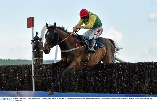 Sizing Europe, with Andrew Lynch up, jumps the last on their way to winning the Boylesports.com Champion Steeplechase.