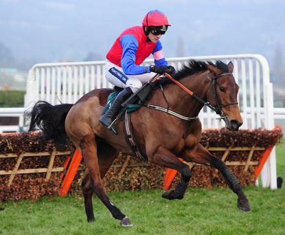 Ruby Walsh and Quevega will look to make further history at Punchestown today.