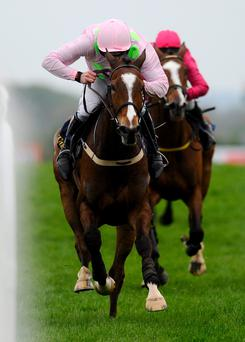 Ruby Walsh riding Vautour win The Tattersalls Ireland Champion Novice Hurdle at Punchestown