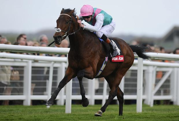 John Gosden's Kingman and James Doyle left their rivals trailing in the Greenham Stakes at Newbury last month - the pair can repeat the dose in this afternoon's 2,000 Guineas at Newmarket. Photo: Alan Crowhurst/Getty Images
