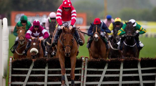 Abbyssial ridden by Ruby Walsh wins The AES Champion Four Year Old Hurdle during day five of the Punchestown Festival