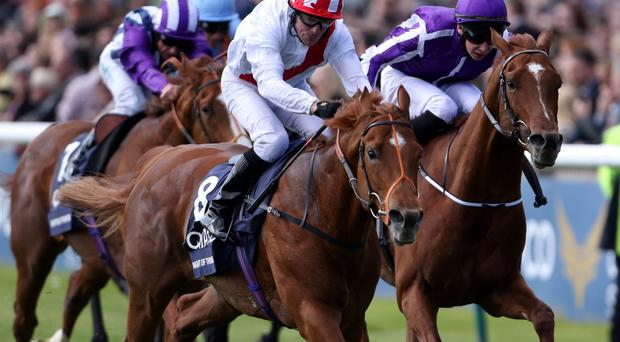 Kieren Fallon drives Night of Thunder to victory in the Qipco 2000 Guineas stakes at Newmarket