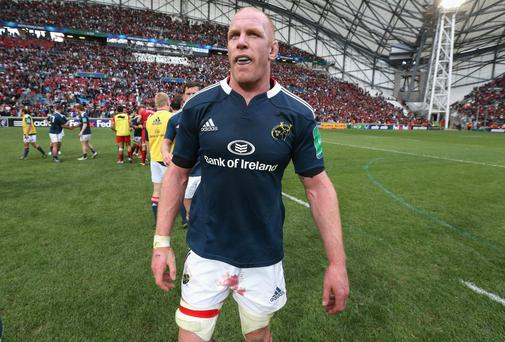 A dejected Paul O'Connell walks off the pitch after Munster's Heineken Cup semi-final defeat to Toulon