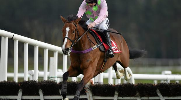 Faugheen, with Ruby Walsh up, jumps the last on their way to winning the Herald Champion Novice Hurdle at Punchestown