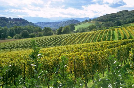 The Gascogne region is second only to Burgundy in terms of gastronomy