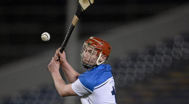 Pauric Mahony hopes that his increased level of practice can yield dividends in a Waterford shirt