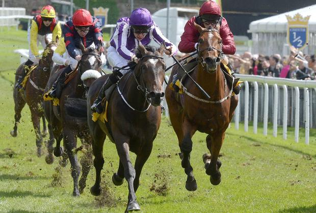 Kingfisher (centre) ridden by Joseph O'Brien wins the Dee Stakes at Chester