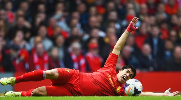 Luis Suarez appeals for a free kick during Liverpool's victory against Newcastle United at Anfield