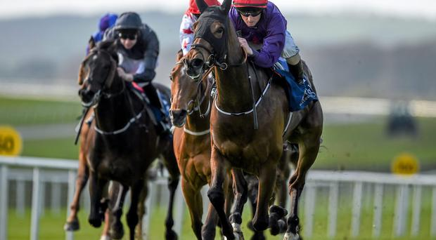Sruthan, with Chris Hayes up, on their way to winning the Big Bad Bob Gladness Stakes
