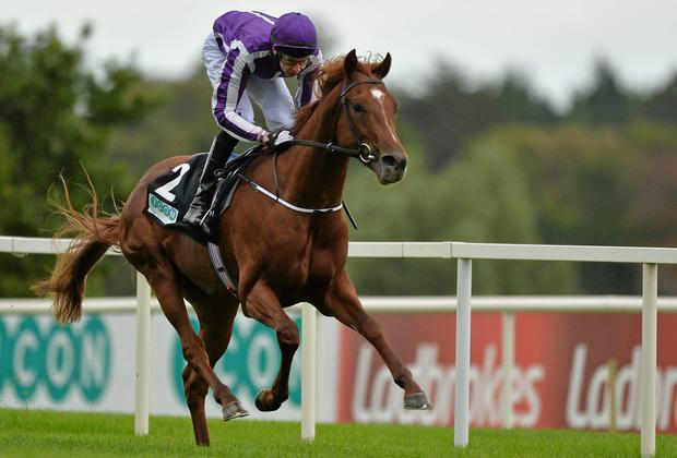 Australia is now favourite for the Investec Derby
