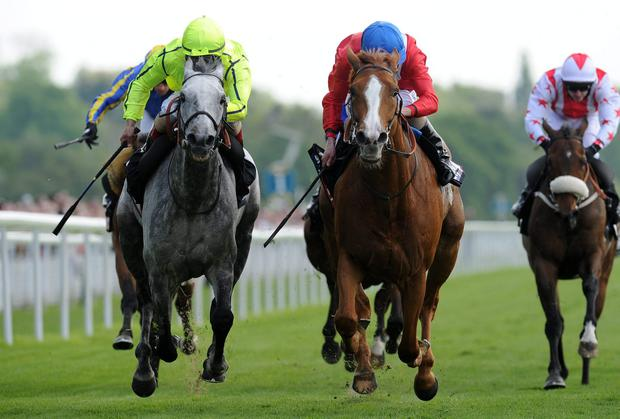 Gospel Choir and Ryan Moore (centre) dig deep to get the better of runner-up Tac de Boistron (Andrea Atzeni) after a terrific duel up the straight in yesterday's Sky Bet Yorkshire Cup