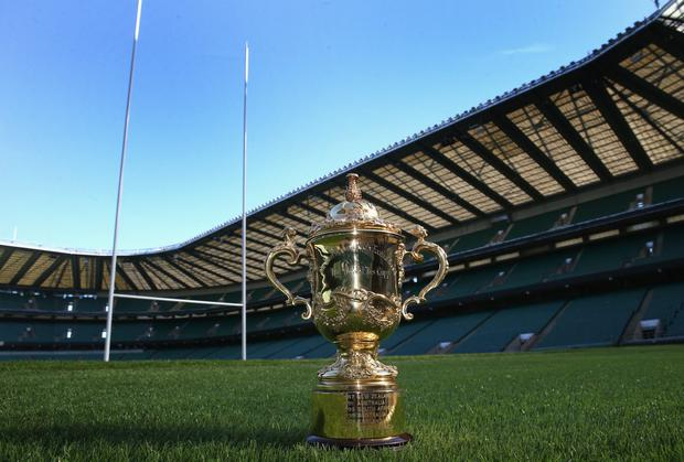 Martin Snedden believes an Irish bid to host the 2023 Rugby World Cup would have huge potential. Photo: David Rogers/Getty Images for IRB