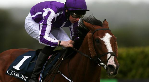 Leading Light ridden by Joseph O'Brien on the way to winning the Coolmore Vintage Crop Stakes at Navan Racecourse