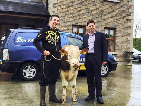 Here is Pajo the Calf canvassing today with Sinn Feins MEP candidate Matt Carthy. Pajo the calf went door to door to help Matt secure all important votes. Pajo is predicting he will get in.