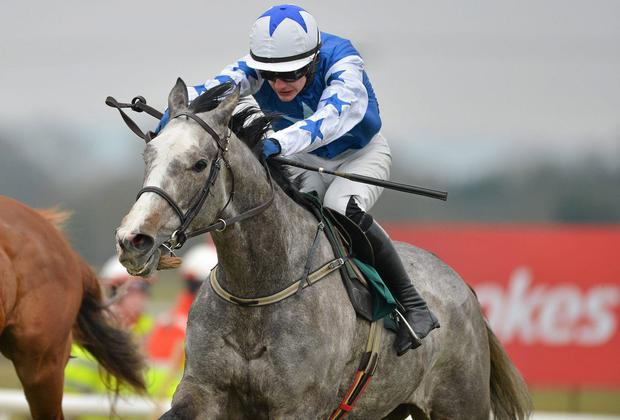 Pique Sous is set to make a return at either Cork tomorrow or the Curragh on Saturday. Photo: Barry Cregg / SPORTSFILE