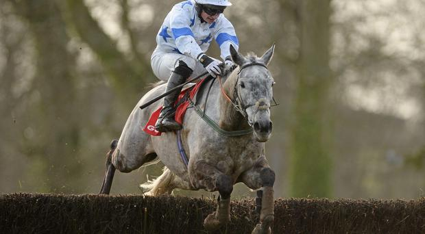 Denis Hogan and Zekarya clear the last on their way to winning at Gowran