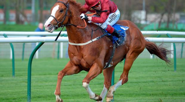Pearl Secret looks to have what it takes to score at Haydock
