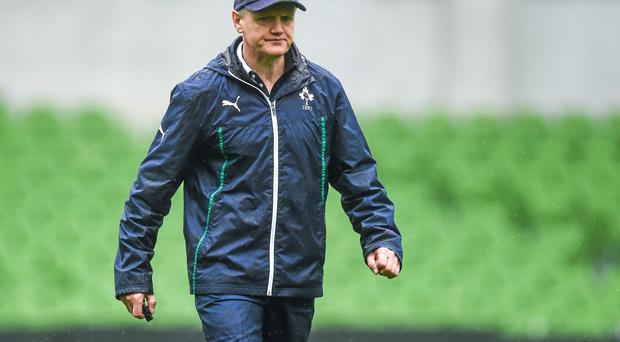 Joe Schmidt knows that Argentina will provide a real test for his Ireland side. Photo: Pat Murphy / SPORTSFILE