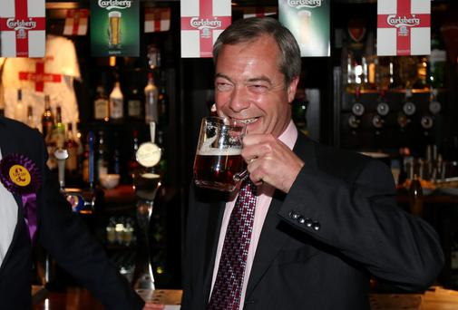 UKIP leader Nigel Farage toasts his party's electoral success with a pint