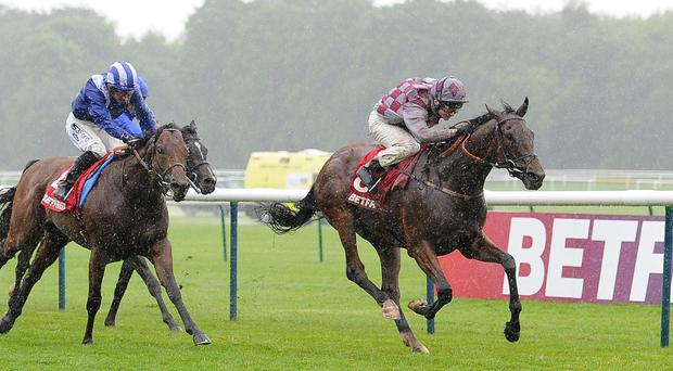 Chatez ridden by Fergus Sweeney wins The Betfred Mobile Casino Silver Bowl Stakes