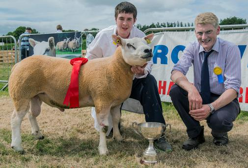 Pictured is James Walker, Croom, Co Limerick, the champion young handler at the Irish Texel Growvite All Ireland Championships at Clonmel Show with Brian Hanthorn, Armagh, judge. Photo O'Gorman Photography.