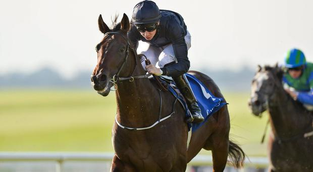 Geoffrey Chaucer, here winning last season's Beresford Stakes under Joseph O'Brien, could spearhead the Ballydoyle assault on the French Derby. Photo: Matt Browne / SPORTSFILE