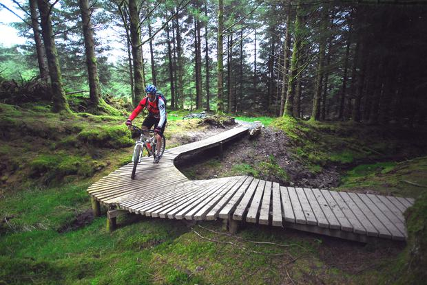 Ballyhoura Mountain Bike Trails Diarmuid O'Leary.JPG